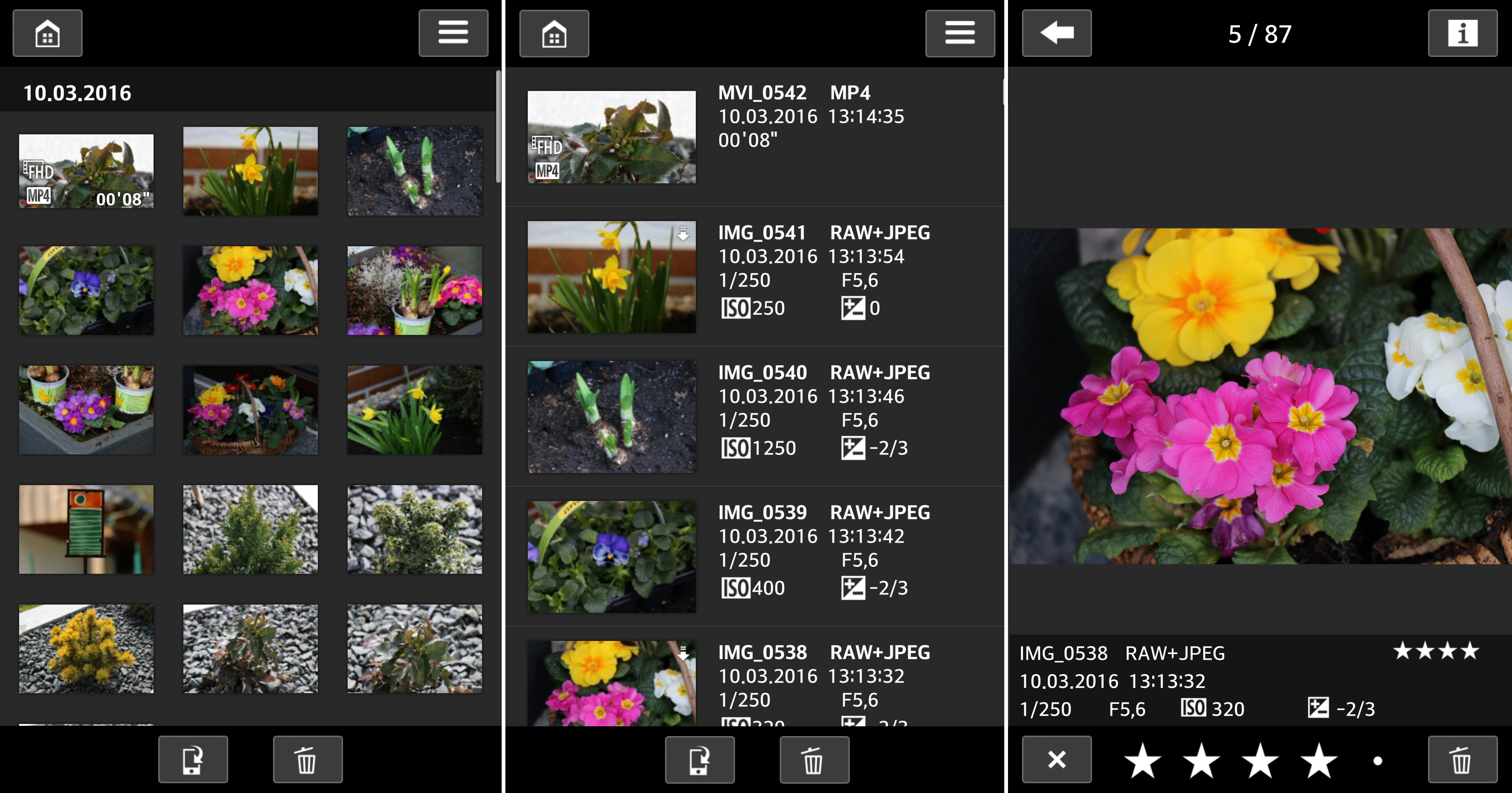 how to use canon camera connect app