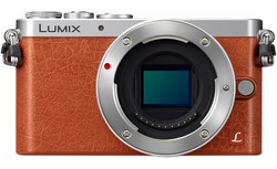 Lumix DMC-GM1